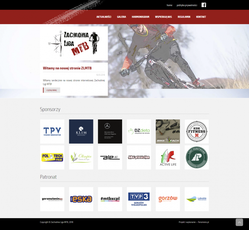 Projekt strony internetowej - home