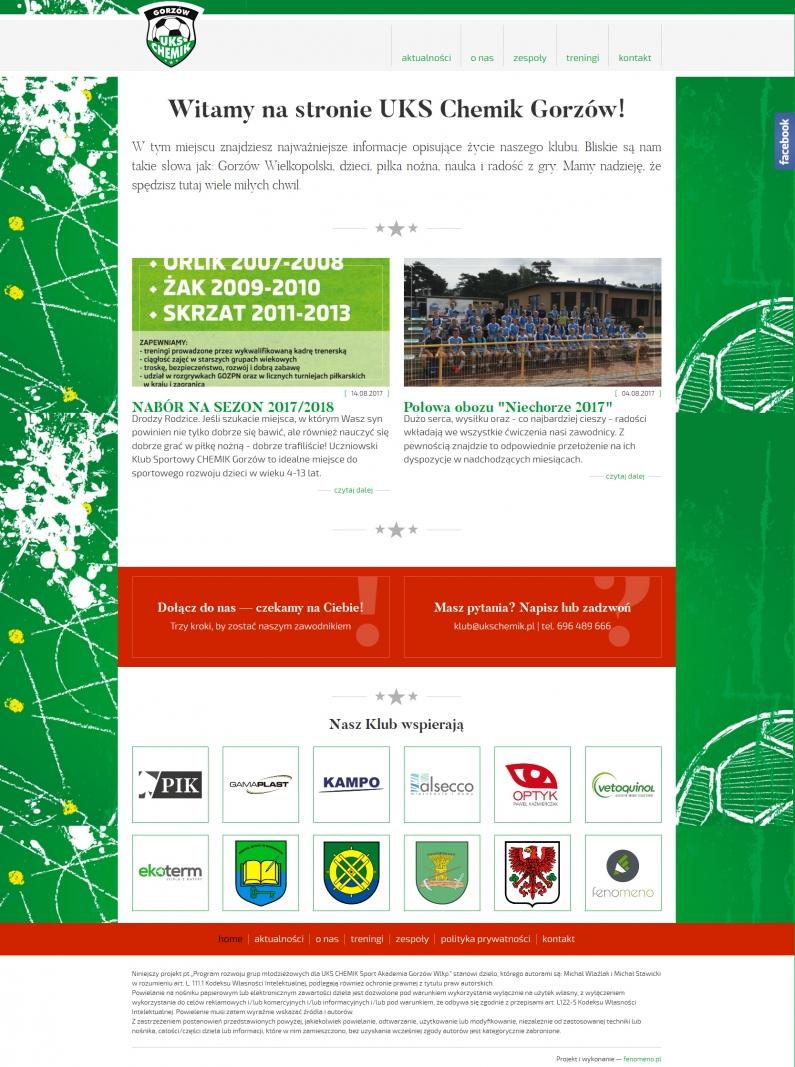 Widok na stronę główną witryny